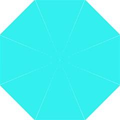 Neon Color - Brilliant Cyan Hook Handle Umbrellas (Large)