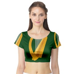 Flag of Leinster Short Sleeve Crop Top (Tight Fit)