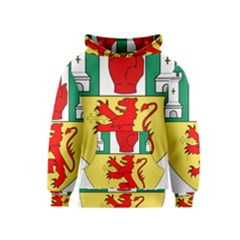 County Antrim Coat of Arms Kids  Pullover Hoodie