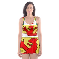 County Antrim Coat of Arms Skater Dress Swimsuit