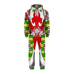 County Donegal Coat of Arms Hooded Jumpsuit (Kids)