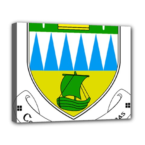 Coat of Arms of County Kerry  Deluxe Canvas 20  x 16