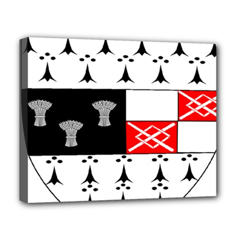 County Kilkenny Coat of Arms Deluxe Canvas 20  x 16