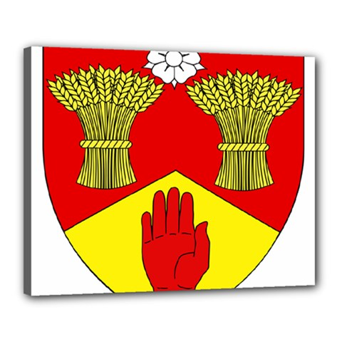 County Londonderry Coat of Arms  Canvas 20  x 16