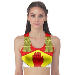County Londonderry Coat of Arms  Sports Bra