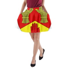 County Londonderry Coat of Arms  A-Line Pocket Skirt