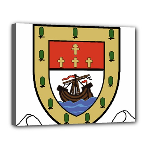 County Mayo Coat of Arms Canvas 14  x 11