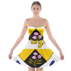 County Offaly Coat of Arms  Strapless Bra Top Dress