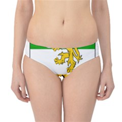 County Offaly Coat Of Arms  Hipster Bikini Bottoms