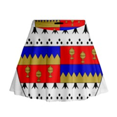 County Tipperary Coat of Arms  Mini Flare Skirt