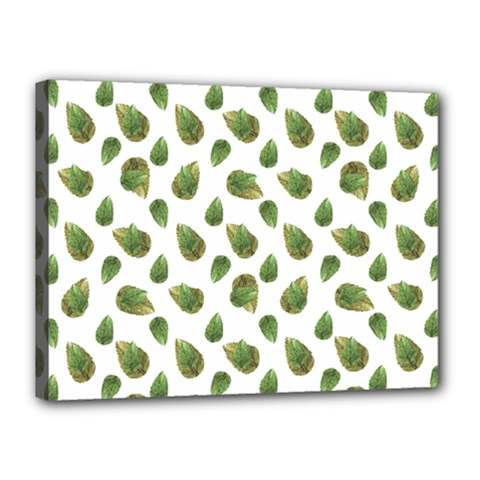 Leaves Motif Nature Pattern Canvas 16  x 12