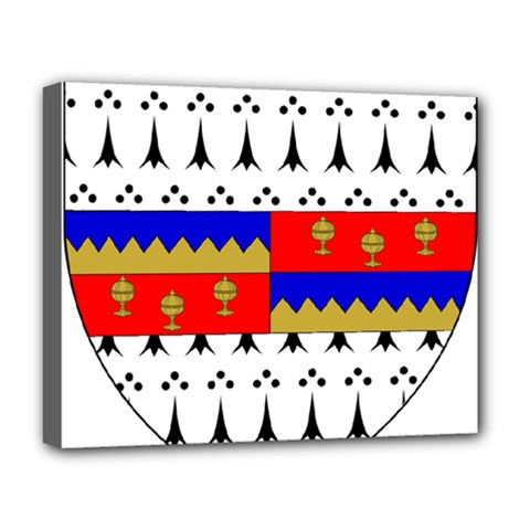 County Tipperary Coat of Arms  Deluxe Canvas 20  x 16