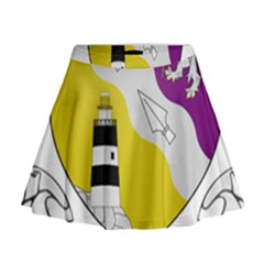 County Wexford Coat of Arms  Mini Flare Skirt