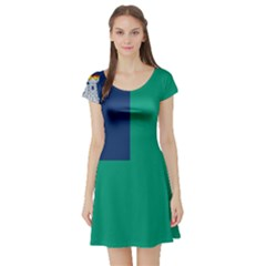 City of Dublin Flag Short Sleeve Skater Dress