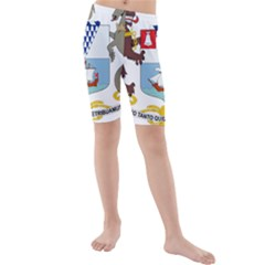 Coat of Arms of Belfast  Kids  Mid Length Swim Shorts