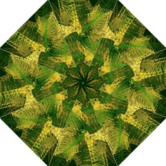 Green And Gold Abstract Hook Handle Umbrellas (Large)