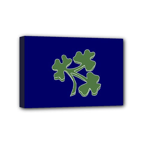 Flag of Ireland Cricket Team  Mini Canvas 6  x 4