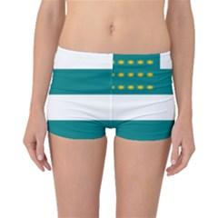 Flag Of Fenian Brotherhood Boyleg Bikini Bottoms