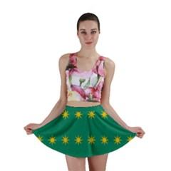 32 Stars Fenian Flag Mini Skirt
