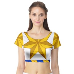 Star Yellow Blue Short Sleeve Crop Top (tight Fit)