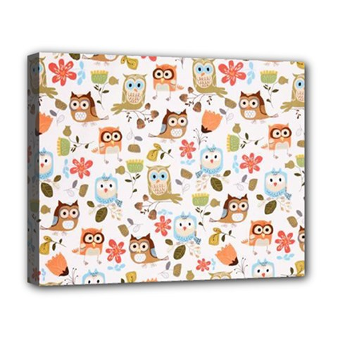 Cute Owl Deluxe Canvas 20  x 16