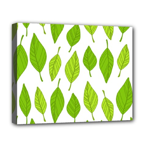 Spring Pattern Deluxe Canvas 20  X 16