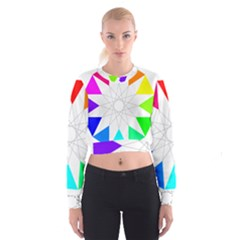 Rainbow Dodecagon And Black Dodecagram Cropped Sweatshirt