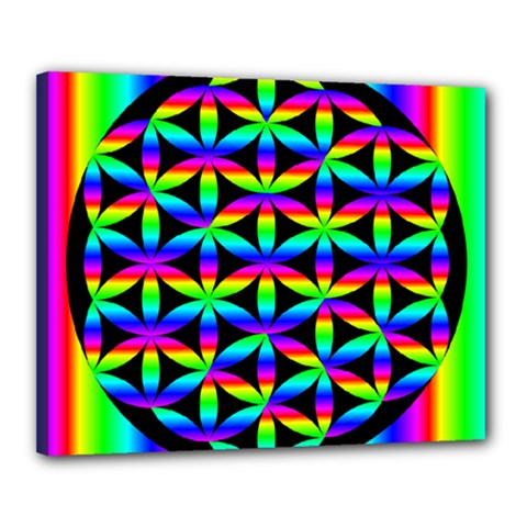 Rainbow Flower Of Life In Black Circle Canvas 20  x 16