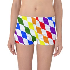 Rainbow Flag Bavaria Boyleg Bikini Bottoms