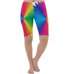 Rainbow Seal Re Imagined Cropped Leggings