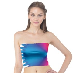 Rainbow Seal Re Imagined Tube Top
