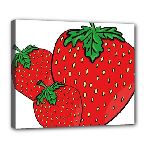 Strawberry Holidays Fragaria Vesca Deluxe Canvas 24  X 20