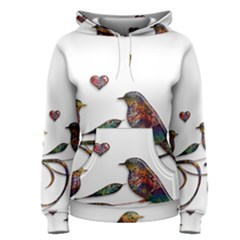 Birds Abstract Exotic Colorful Women s Pullover Hoodie