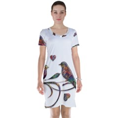 Birds Abstract Exotic Colorful Short Sleeve Nightdress