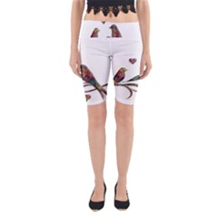 Birds Abstract Exotic Colorful Yoga Cropped Leggings