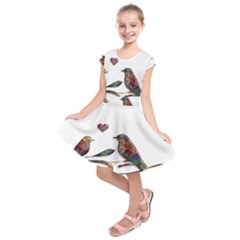 Birds Abstract Exotic Colorful Kids  Short Sleeve Dress