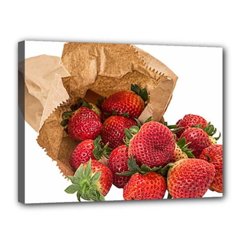 Strawberries Fruit Food Delicious Canvas 16  X 12