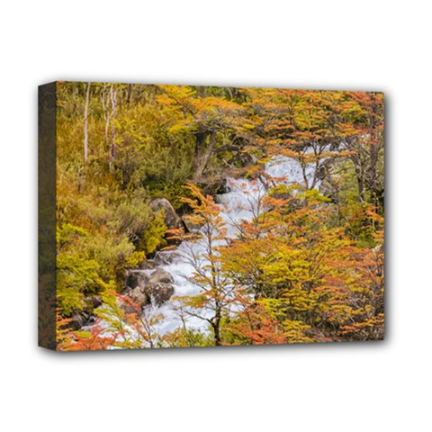 Colored Forest Landscape Scene, Patagonia   Argentina Deluxe Canvas 16  X 12