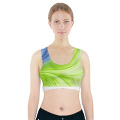 Colors Sports Bra With Pocket