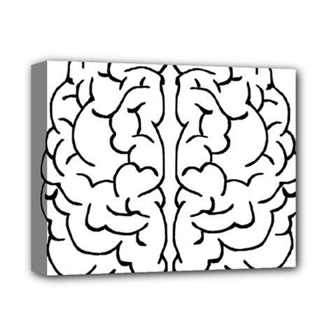 Brain Mind Gray Matter Thought Deluxe Canvas 14  X 11