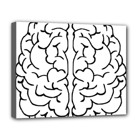 Brain Mind Gray Matter Thought Deluxe Canvas 20  X 16