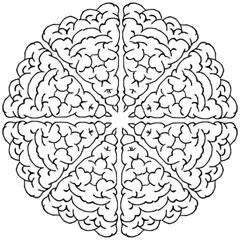 Brain Mind Gray Matter Thought Golf Umbrellas