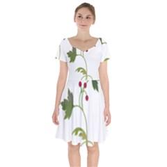 Element Tag Green Nature Short Sleeve Bardot Dress