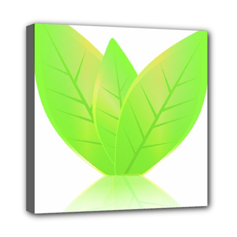 Leaves Green Nature Reflection Mini Canvas 8  x 8