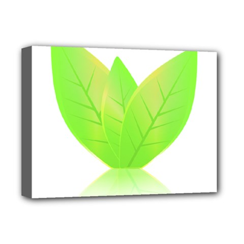 Leaves Green Nature Reflection Deluxe Canvas 16  x 12