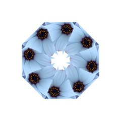 Daisy Flower Floral Plant Summer Folding Umbrellas
