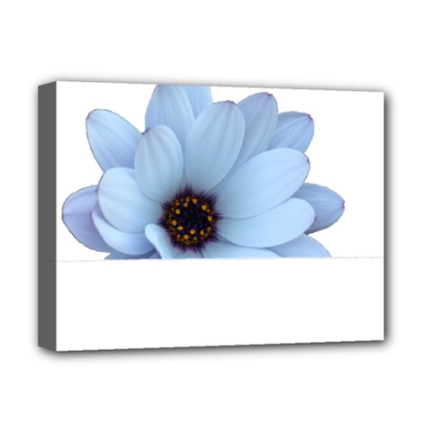Daisy Flower Floral Plant Summer Deluxe Canvas 16  X 12