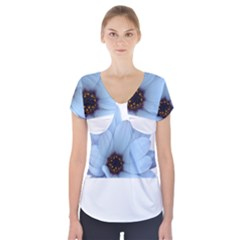 Daisy Flower Floral Plant Summer Short Sleeve Front Detail Top