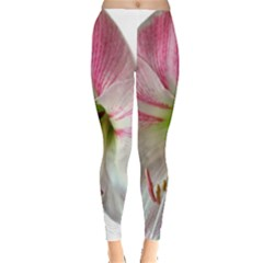 Flower Blossom Bloom Amaryllis Leggings