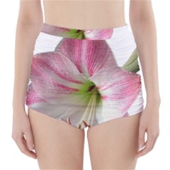 Flower Blossom Bloom Amaryllis High Waisted Bikini Bottoms